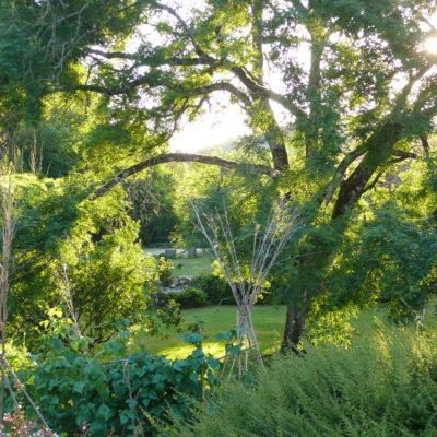 Vue du jardin 3